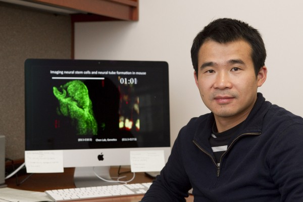 "A team led by Jianfu ""Jeff"" Chen, an assistant professor of genetics at the University of Georgia, has created a mouse model that could lead to the creation of new treatments and diagnostics for the Zika virus."