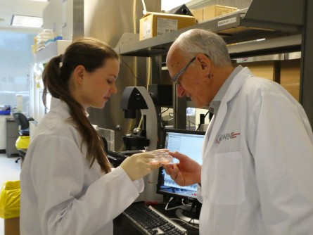 Newswise: McEwen Centre Scientists Produce Functional Heart Pacemaker Cells