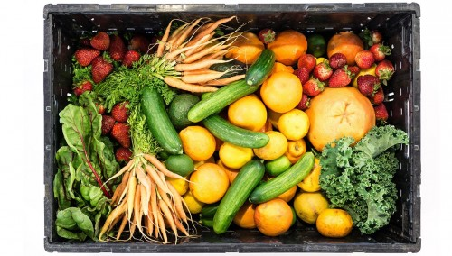 Newswise: A Diet of Fruits, Vegetables May Help Kidney Disease Patients