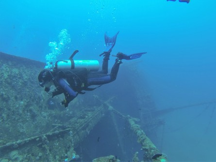 Newswise: Training to Become a Scuba Diver? Start at the Dentist