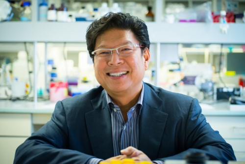 Newswise: Renowned Neuroscientist Jerold Chun Joins Sanford Burnham Prebys Medical Discovery Institute