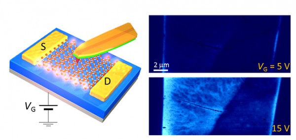 (Left) Mixing the power of scanning probe microscopy with microwaves (similar to those used to heat your food) has resulted in a new way to image materials. The schematic on the left shows how microwaves, focused by a scanning probe tip, can be used to reveal the internal structures of a working device made of atomically thin molybdenum disulfide (MoS<sub>2</sub>). (Right) The resulting image maps the conductivity of the device and shows the difference in the structures when the MoS<sub>2</sub> device is barely turned on (upper right, showing that the edges of the atomic sheet are still conductive) and when the device is on (lower right, showing thread-like imperfections).