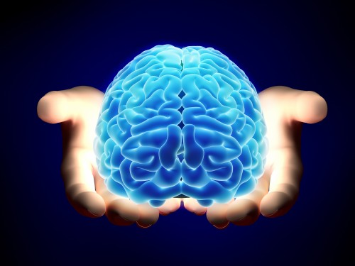 Newswise: FAU's Brain Institute Commemorates 'Brain Awareness Week'