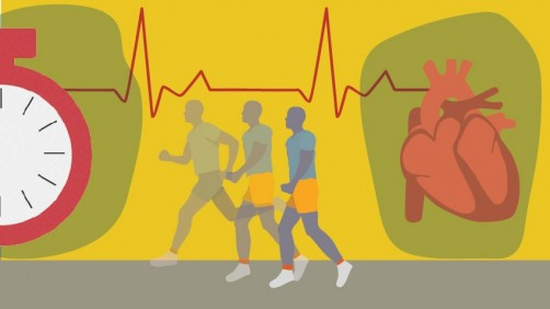 Newswise: Moderate Exercise May Be Beneficial for HCM Patients