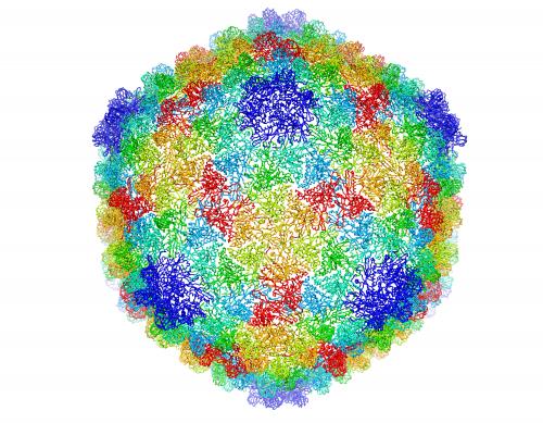 Cryo-Electron Microscopy