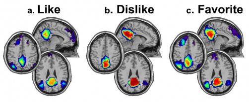 Newswise: Music Has Powerful (and Visible) Effects on the Brain