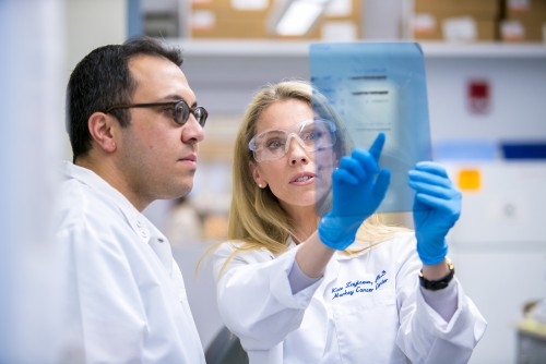 Newswise: UK Awarded $11.2 Million Grant to Launch New Center for Cancer and Metabolism