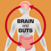 Gut_Brain_Connection_iStock-609532048tw.png