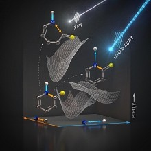 An illustration shows how energy from light changes a 2-thiopyridone molecule. Optical light strikes the molecule, and it loses a proton bound to hydrogen. An X-ray probe allows scientists to follow selective bond breaking between nitrogen and its carbon and hydrogen neighbors.