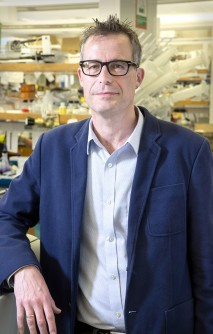 Newswise: UGA Researchers Report Milestone in Global Fight Against a Major Cause of Diarrheal Disease