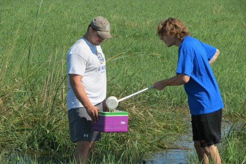 Newswise: Keep Your Guard Up Against West Nile Virus, Say South Dakota Scientists