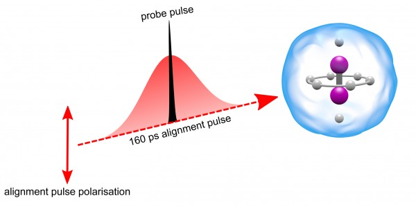 Schematic illustration of the alignment, induced by a 160 picosecond laser pulse (red), of an iodine molecule (purple) inside a helium droplet (blue). The iodine molecule is aligned vertically by the polarization direction of the alignment pulse, shown by the double-headed red arrow to the left. The degree of alignment is measured by a probe pulse (black) synchronized to the peak of the alignment pulse.