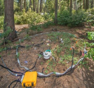 Experimental heating plot at Blodgett Forest Research Station in California. The ring around the plot protects the wiring supplying 22 heating cables that each go 2.4 meters (~7.9 feet) into the ground. Each plot also has soil temperature and moisture sensors that measure continuously and automated chambers that measure soil respiration every 30 minutes.