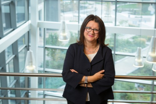 Newswise: FAU Appoints Stella N. Batalama, Ph.D., as Dean of the College of Engineering and Computer Science