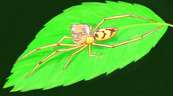 Students and a scientist at the University of Vermont have discovered 15 new species of 'smiley-faced' spiders--and named them after, among others, US Senator Bernie Sanders.