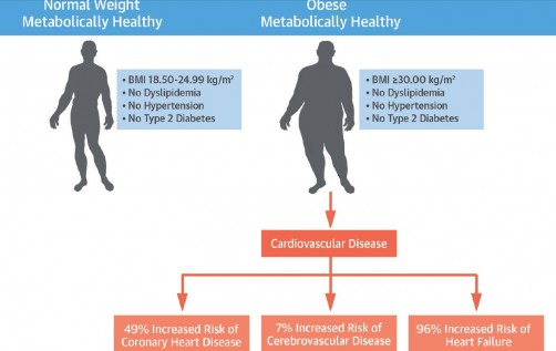 Newswise: Study Shows So-Called 'Healthy Obesity' Is Harmful to Cardiovascular Heath
