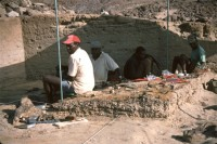 allia_bay_excavation.jpg