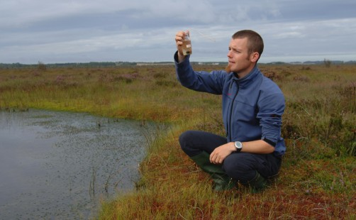 Newswise: Peatland Plants Adapting Well to Climate Change, Suggests Study