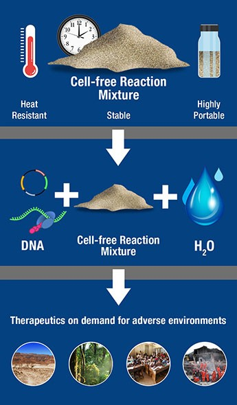 Researchers at the Johns Hopkins Applied Physics Laboratory have demonstrated a significant advancement in the preservation of certain kinds of therapeutics for field applications. The new research created a cell-free protein expression reagent (top) that is portable, stable, and heat resistant. This cell-free reaction mixture can be stored and then reconstituted with DNA and water (center), which allows it to be deployed without a cold-chain storage system and more easily used in adverse conditions and environments.