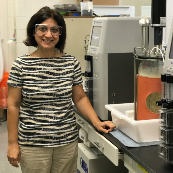 Meltem Urgun Demirtas, an environmental engineer in Argonne's Energy Systems Division, is the principal investigator in a break-through biogas technology that could change the waste-to-fuel industry.