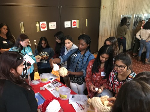 Newswise: 18 High Schools Throughout New Jersey Participate in First Ever Young Women in Bio Event at Rutgers