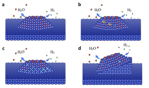 Hydrogen caused oxygen atoms to go missing at a buried interface of a copper oxide, Cu<sub>2</sub>O, island on metallic copper (Cu). This caused the island to rotate when it transformed to metal. (a) The hydrogen gas (H<sub>2</sub>, atoms are green) reacted with the oxygen in the oxide, forming water (H<sub>2</sub>O) that was released from the surface. (b) The departing oxygen atoms left behind vacancies in the oxide. (c) The oxygen vacancies (cyan) moved through the oxide layer and accumulated at the interface. (d) The entire oxide island rotated because of the tilted interface.