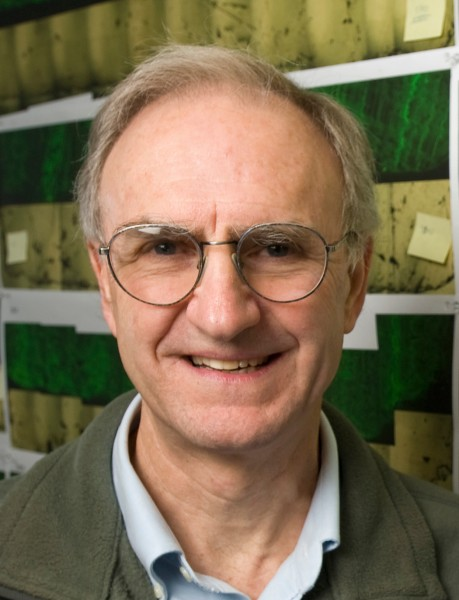 John Valley, professor of geoscience at the University of Wisconsin–Madison