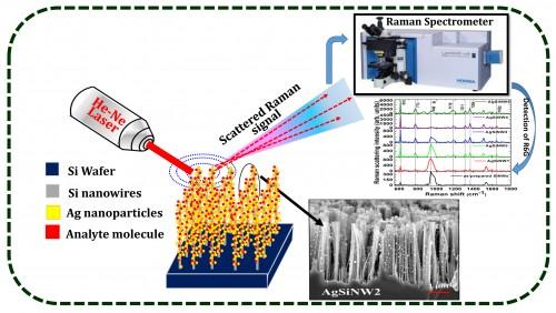 Silver Nanoparticles