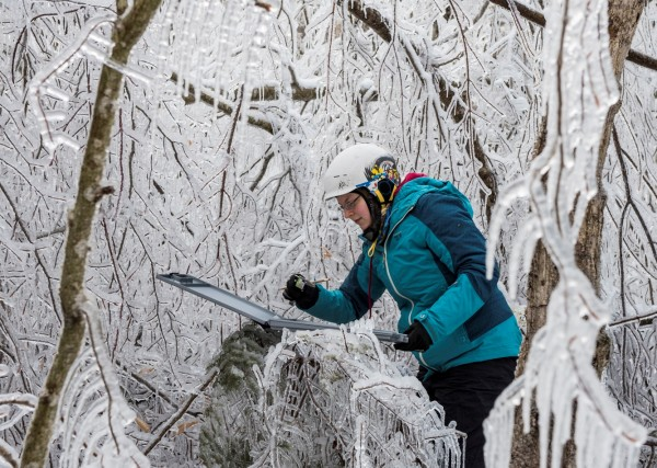 Wendy Leuenberger, a former graduate student at SUNY-ESF, measures ice accumulation following a simulated ice storm at the Hubbard Brook Experimental Forest, NH.