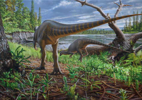 Newswise: New Turkey-Sized Dinosaur From Australia Preserved in an Ancient Log-Jam