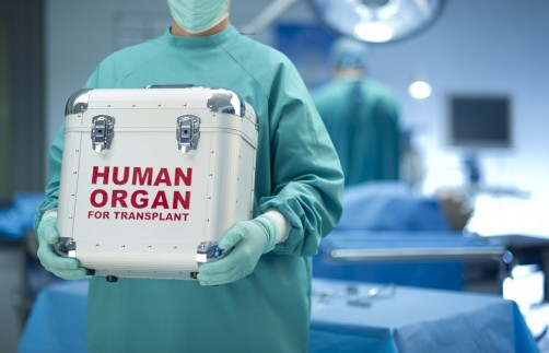 Newswise: Disparity Persists: Racial and Ethnic Minority Patients Still Less Likely Than White Patients to Get Live Donor Kidney Transplants