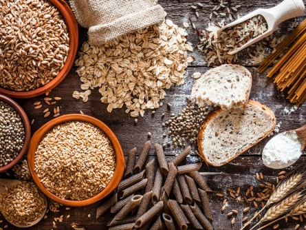 Newswise: Dietary Fiber Protects Against Obesity and Metabolic Syndrome, Study Finds