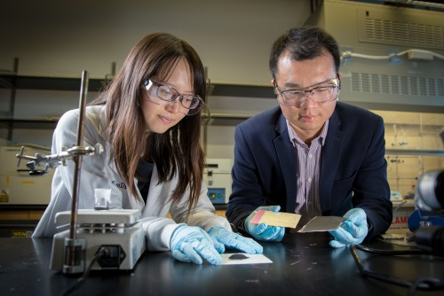 (L-R): First author Yang Shi and Professor Zheng Chen of UC San Diego developed a method to recycle and regenerate cathodes of spent lithium ion batteries