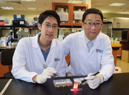 Newswise: NUS Researchers Develop Wireless Light Switch for Targeted Cancer Therapy