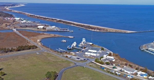 An aerial view of the coast near University of Delaware's Hugh R Sharp campus in Lewes.