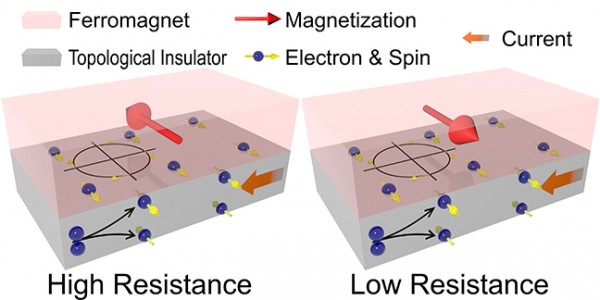 The schematic figure illustrates the concept and behavior of magnetoresistance. The spins are generated in topological insulators. Those at the interface between ferromagnet and topological insulators interact with the ferromagnet and result in either high or low resistance of the device, depending on the relative directions of magnetization and spins.
