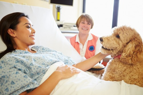 Newswise: Johns Hopkins Brings Therapy Dogs into ICU