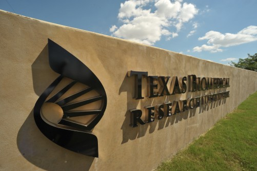 Newswise: Promising Treatment for Ebola Virus to be Tested at Texas Biomed