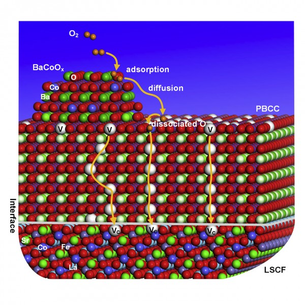 The new Georgia Tech fuel cell catalyst, a coating only about two dozen nanometers thick, works in two phases. First, the nanoparticles on top grab molecular oxygen from the air and make it very easy and tear apart into single oxygen ions. Then oxygen vacancies in the nanoparticle rapidly pass the oxygen ions to the second phase, a layer full of oxygen vacancies which shuttle the ions to their meeting with ionic hydrogen to complete the chemical process that powers fuel cells.