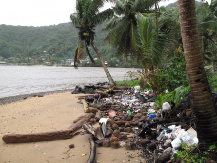 Newswise: Is It Possible to Remove Plastics From Earth's Oceans?