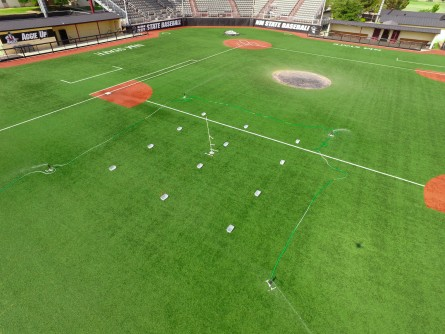 Newswise: Water Conservation: Artificial Turfgrass Versus Real Grass