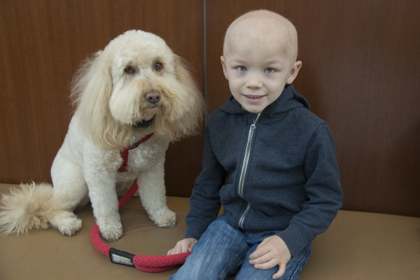 Maddie, a Beaumont therapy dog, with Hudson Brown at the Proton Therapy Center in Royal Oak, Michigan.