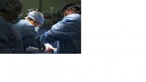 Newswise: Study Suggests Older Surgeons Produce Lower Mortality Rates in Emergency Procedures