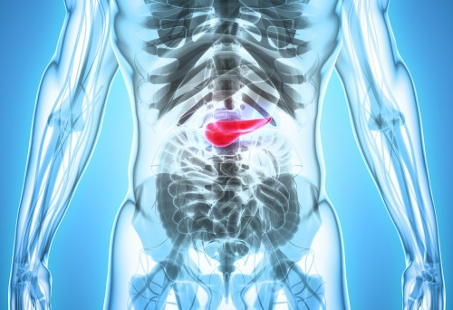 Newswise: Improving Survival in Pancreatic Cancer with Platinum-Based Chemotherapy