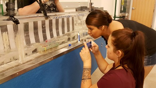 Newswise: NATURE program builds a STEM career pathway for tribal students in North Dakota