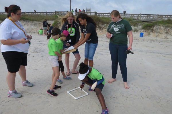 Volunteers clean the beaches in Flagler County. Maia McGuire, a UF/IFAS Extension Florida Sea Grant agent in Flagler County, leads a program in which volunteers clear the beaches of microplastics.