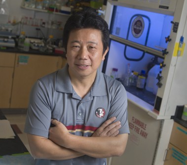 Newswise: FSU Research: Zika Suppresses Virus Fighting Cells
