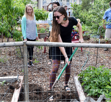Newswise: Campus Garden Promotes Sustainable Food Practices