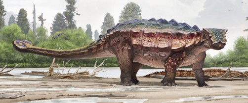 Newswise: Newly Discovered Armored Dinosaur From Utah Reveals Intriguing Family History