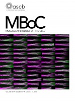 mboc.2018.29.issue-17.cover.jpg